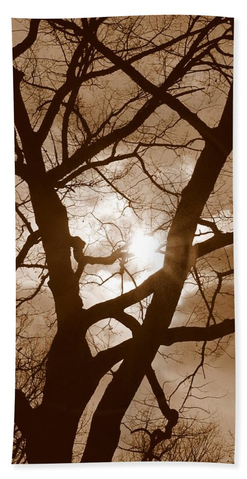 Moon Beach Towel featuring the photograph Branches In The Dark 2 by Valentino Visentini