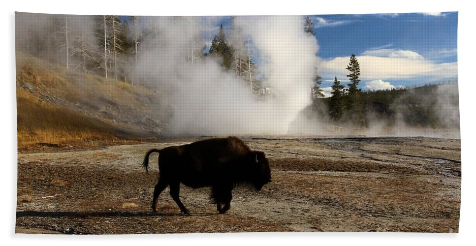 Vent Geyser Beach Towel featuring the photograph Breaking The Rules by Adam Jewell