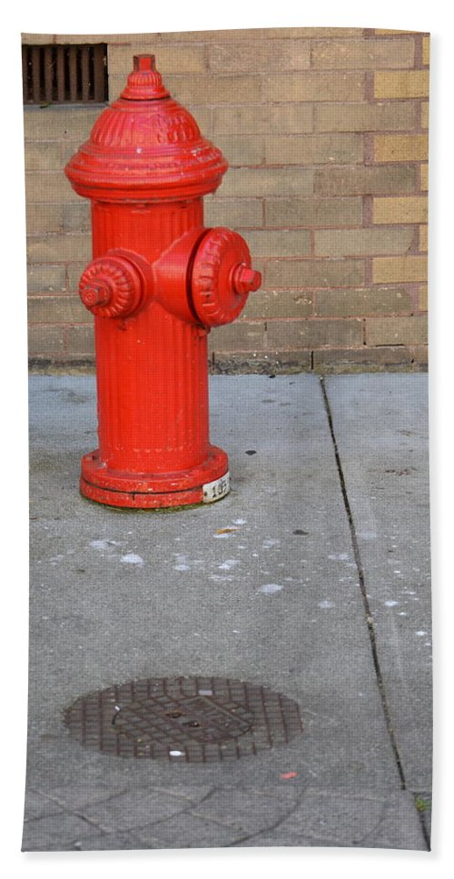 Fire Hydrant Beach Towel featuring the photograph Bricks And Fire by The Artist Project