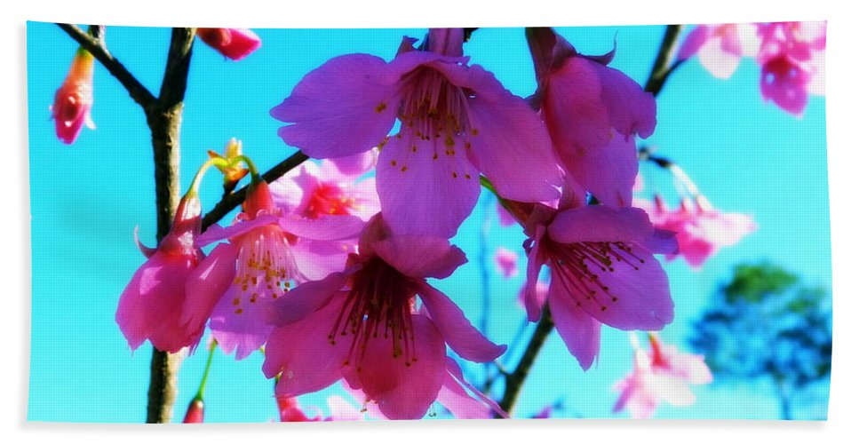 Flower Beach Towel featuring the photograph Bright Blossoms by Carla Parris