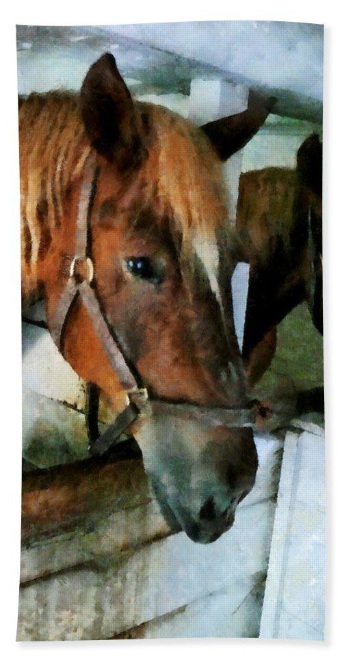 Horse Beach Towel featuring the photograph Brown Horse In Stall by Susan Savad
