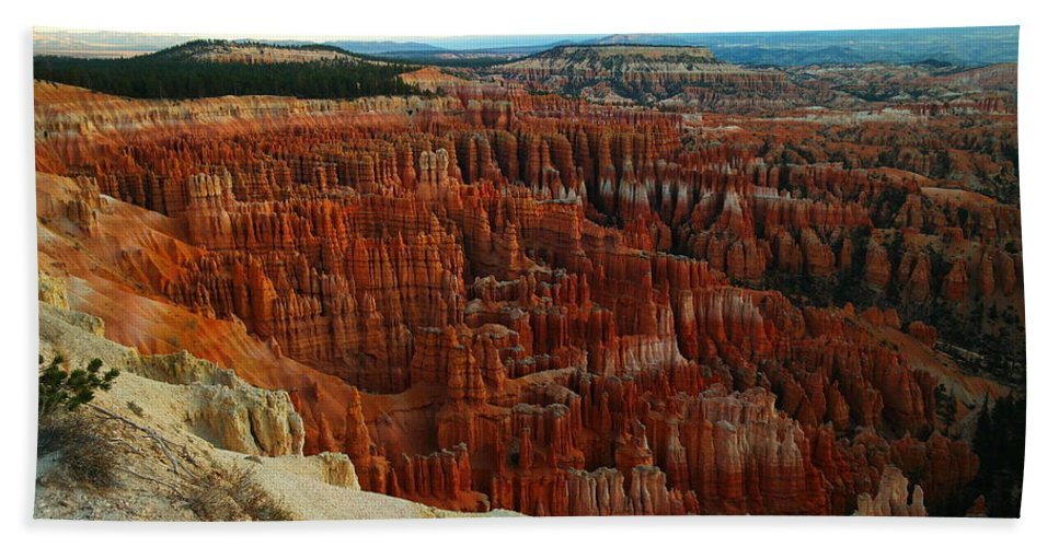 Rocks Beach Towel featuring the photograph Bryce Canyon In The Afternoon by Jeff Swan
