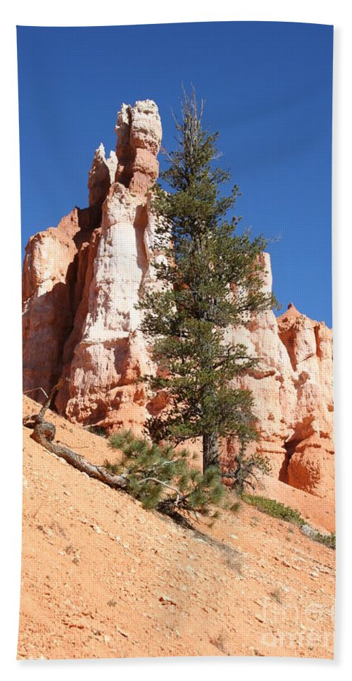 Canyon Beach Towel featuring the photograph Bryce Canyon Red Fins by Christiane Schulze Art And Photography