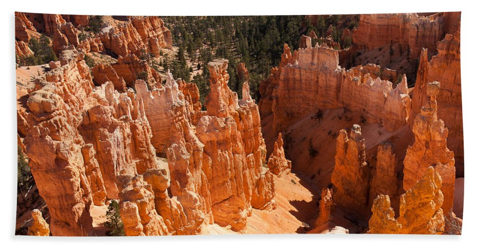 Bryce Canyon National Park Beach Towel featuring the photograph Bryce Canyon Vista by John M Bailey