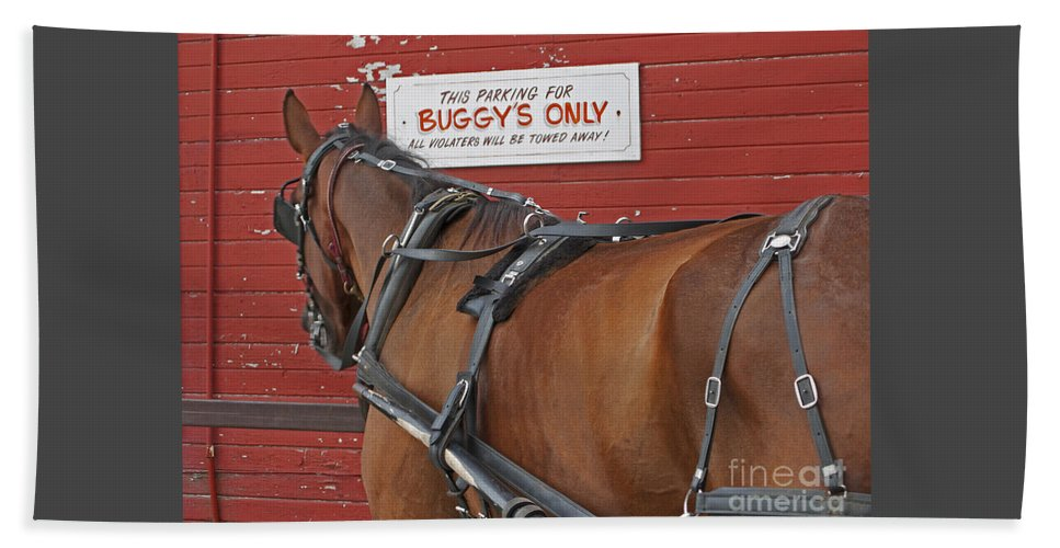 Amish Beach Towel featuring the photograph Buggy Attached by Ann Horn