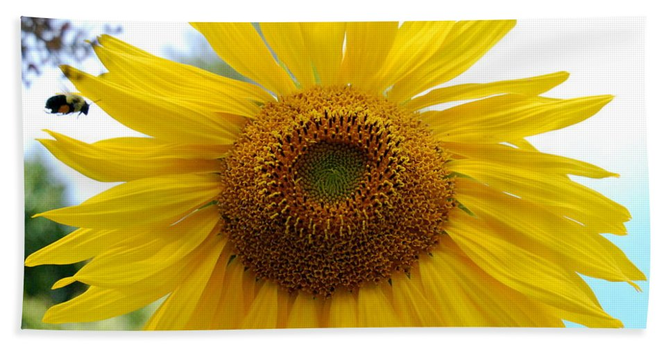 Bee Beach Towel featuring the photograph Bumble Bee And Sunflower by Eunice Miller