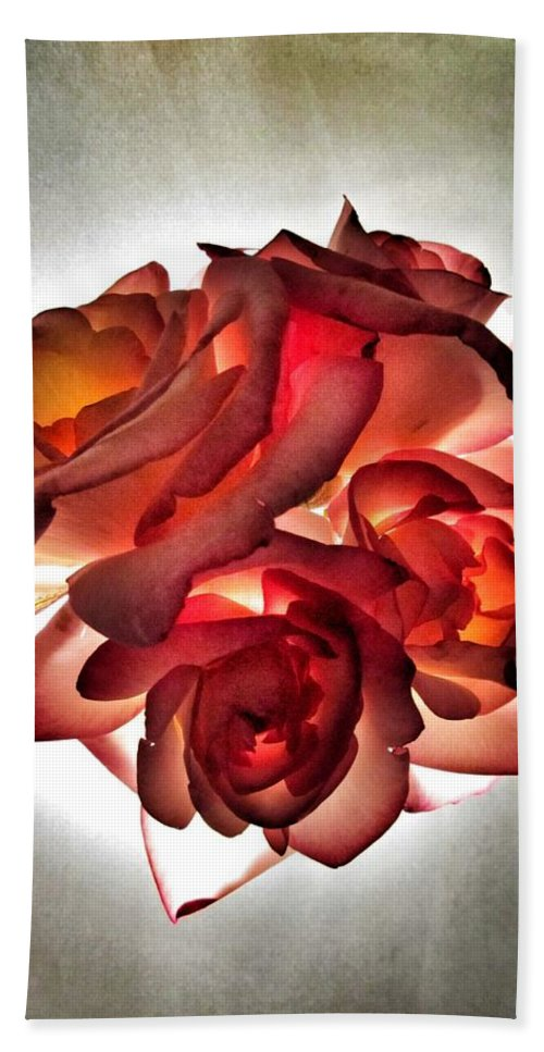 Roses Beach Towel featuring the photograph Burning Away by Marianna Mills