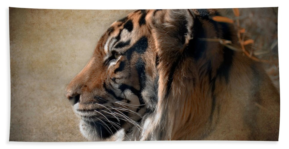 Tiger Beach Towel featuring the photograph Burning Bright by Betty LaRue