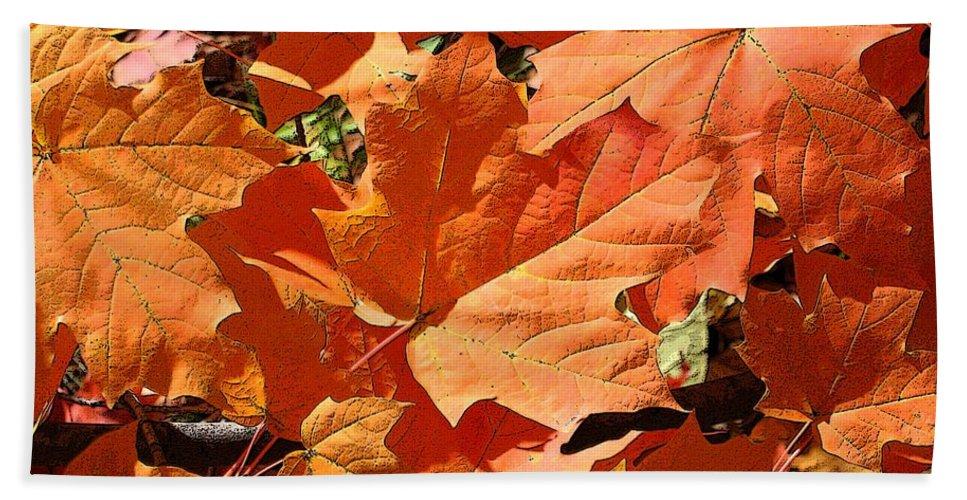 Autumn Beach Towel featuring the photograph Burnt Orange by Ann Horn