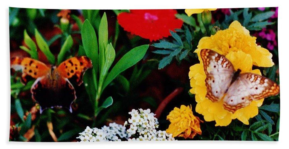 Butterflies Beach Towel featuring the photograph Butterflies by Daniel Thompson