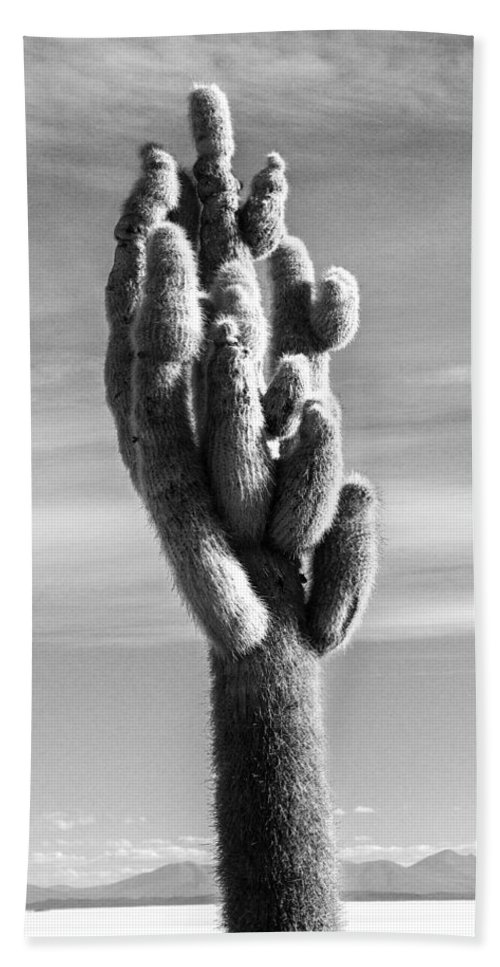 Black And White Beach Towel featuring the photograph Cactus Island Salt Flats Black And White by For Ninety One Days
