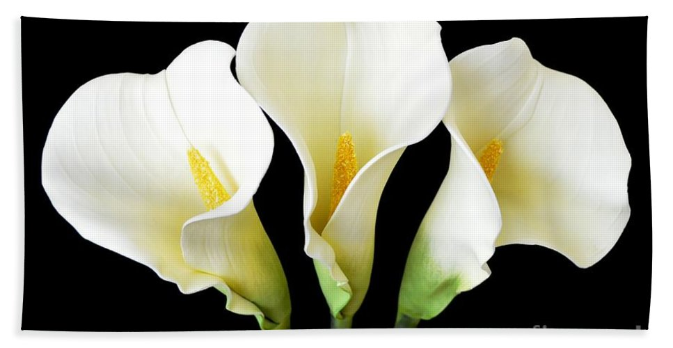 Cally Lily Beach Towel featuring the photograph Calla Lily Trio by Mary Deal