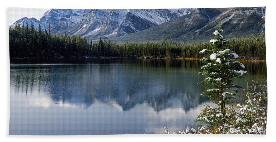 Canadian Peaks Beach Towel featuring the photograph 1m3541-canadian Peak Reflected In Herbert Lake by Ed Cooper Photography
