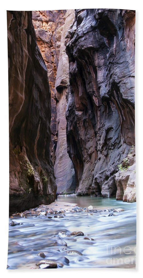 The Narrows Zion National Park Utah Slot Canyon Canyons Water Virgin River Rivers Mountain Mountains Rock Parks Landscape Landscapes Waterscape Waterscapes Trail Trails Beach Towel featuring the photograph Canyon Color by Bob Phillips