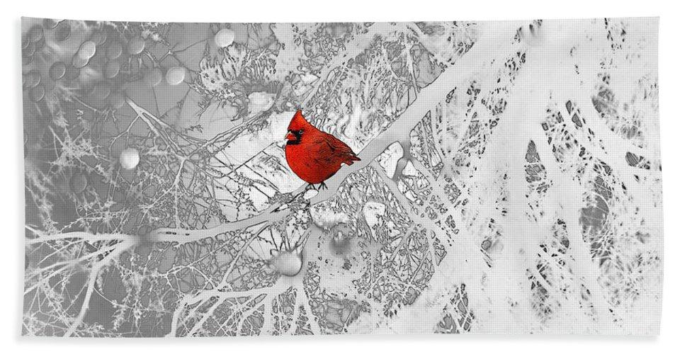 Cardinal In Winter Beach Towel featuring the drawing Cardinal In Winter by Ellen Henneke
