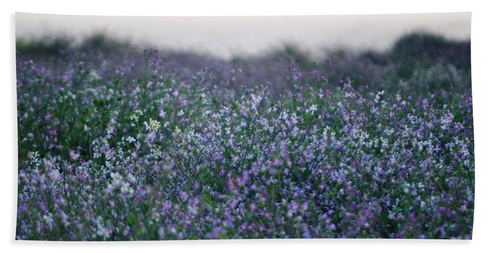 Wildflowers Beach Towel featuring the photograph Carpinteria California Wildflowers by Kyle Hanson