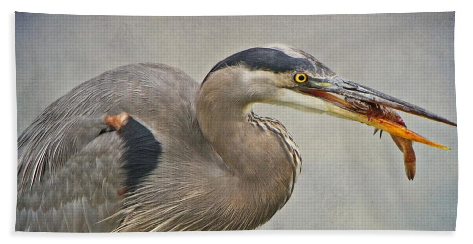 Beach Towel featuring the photograph Catch Of The Day by Heather King