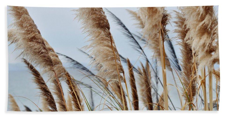 Pampas Grass Beach Towel featuring the photograph Central Coast Pampas Grass II by Kyle Hanson