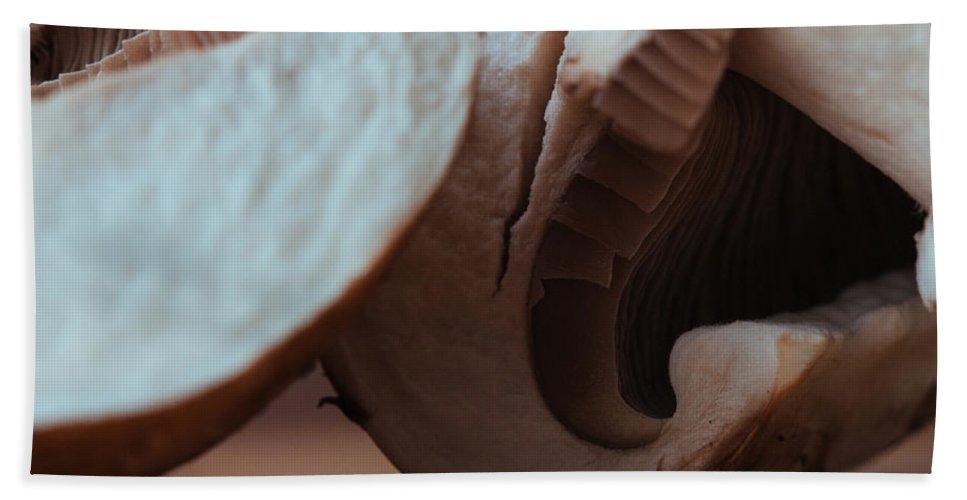 100mm Beach Towel featuring the photograph Cetacean Crimini by Kyra Savolainen