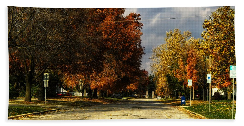 Dwight Beach Towel featuring the photograph Changing To Fall Colors In Dwight Il by Thomas Woolworth