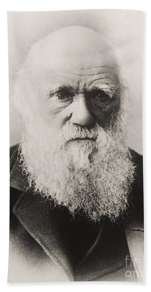Beard Beach Towel featuring the photograph Charles Darwin by English School