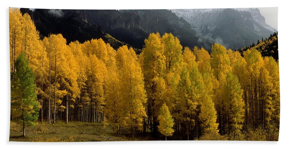 Colorado Beach Towel featuring the photograph Cimarron Forks by Eric Glaser