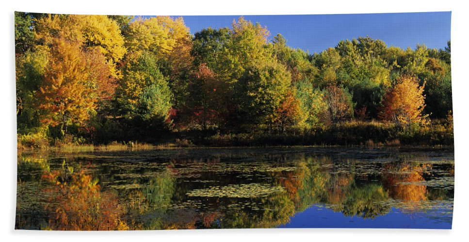 Fall Beach Towel featuring the photograph Clark Pond - Auburn New Hampshire by Erin Paul Donovan