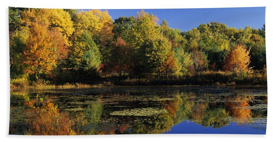 Fall Beach Sheet featuring the photograph Clark Pond - Auburn New Hampshire by Erin Paul Donovan