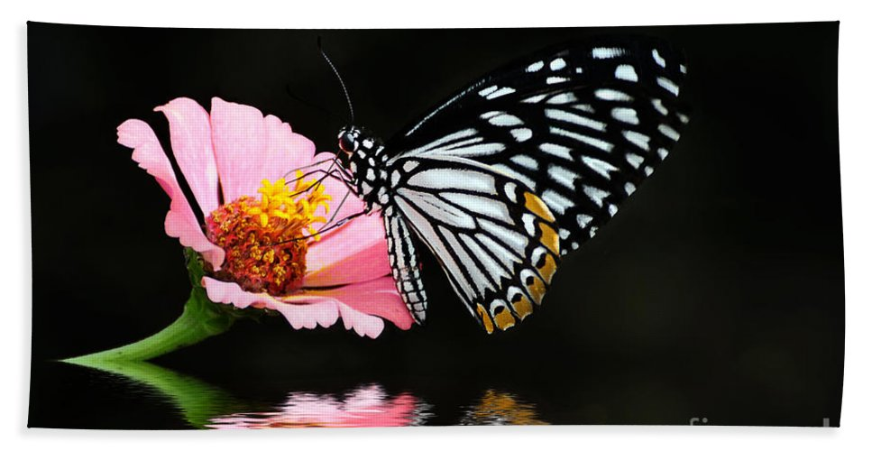 Butterfly Beach Towel featuring the photograph Cliche by Lois Bryan