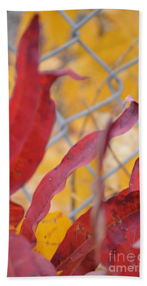 Fence Beach Towel featuring the photograph Color Containment by Brian Boyle