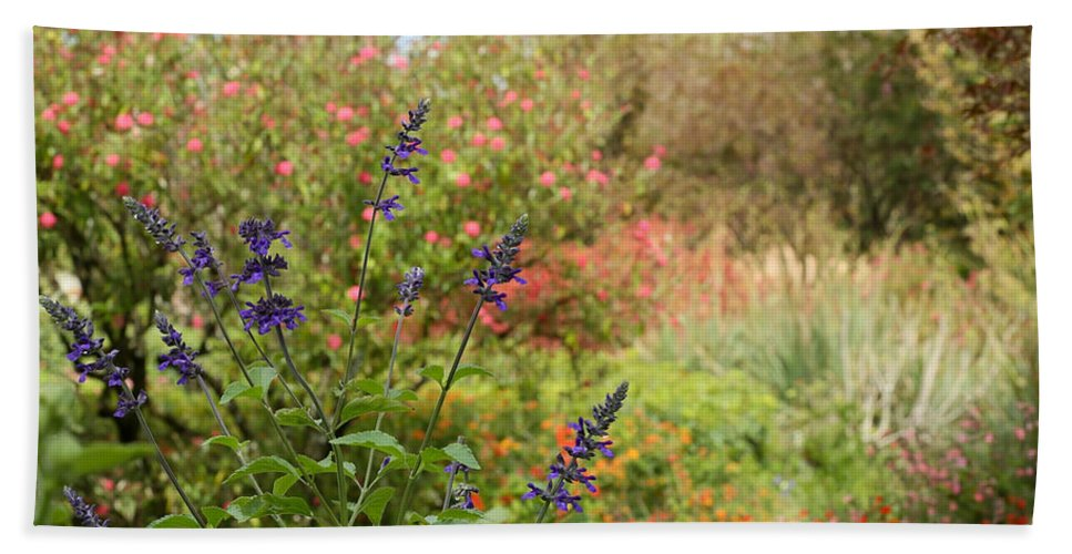 Landscape Beach Towel featuring the photograph Colorful Garden In Spring by Sabrina L Ryan