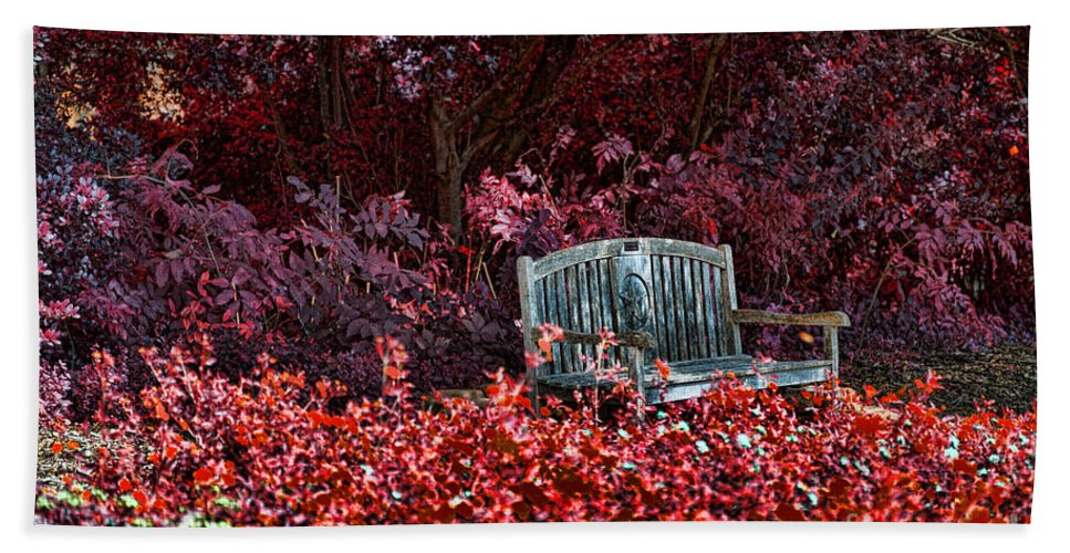 Flowers Beach Towel featuring the photograph Colorspace by Douglas Barnard