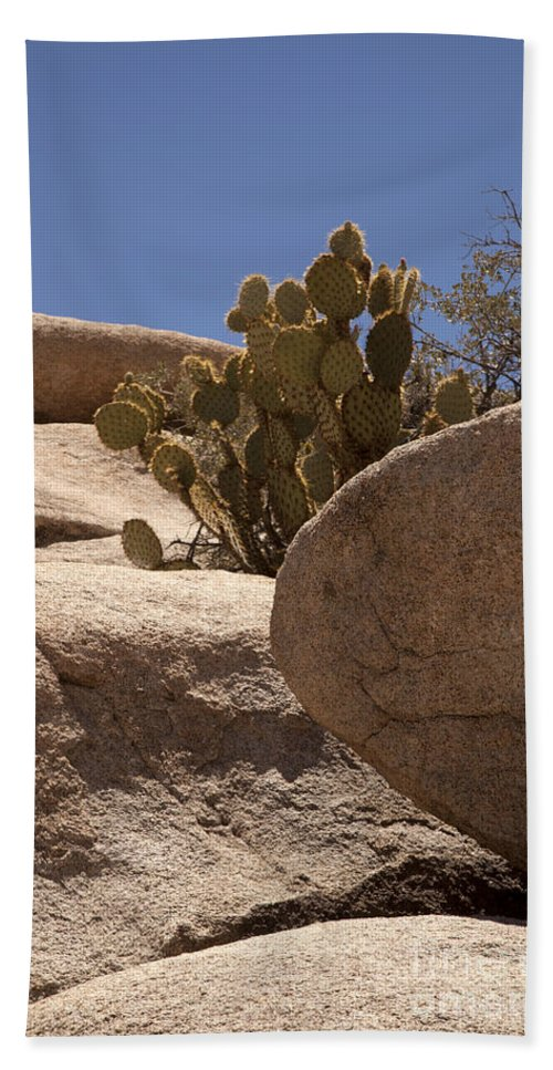 joshua Tree joshua Tree National Park Beach Towel featuring the photograph Coming In by Amanda Barcon