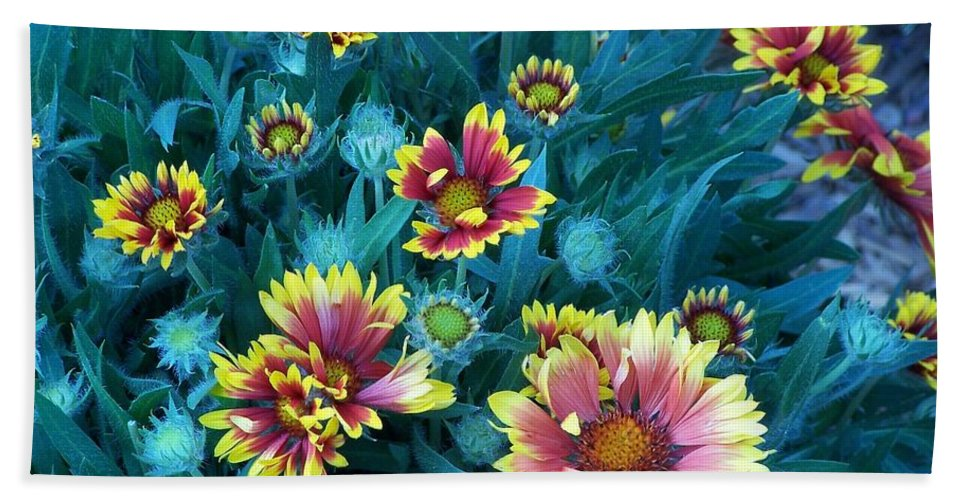 Colorful Beach Towel featuring the photograph Contrasting Colors Orignial by Ernie Echols