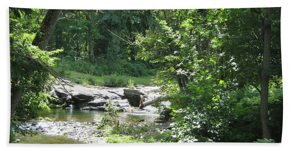 Creek Beach Towel featuring the photograph Cool Waters II by Ellen Levinson