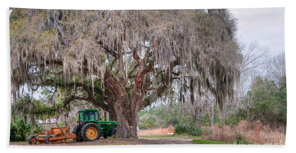Hansen Beach Towel featuring the photograph Coosaw Cross Roads With Live Oak by Scott Hansen