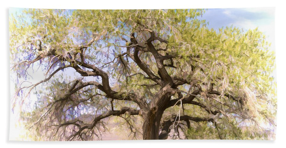 Tree Beach Towel featuring the photograph Cottonwood Tree Digital Painting by Dianne Phelps