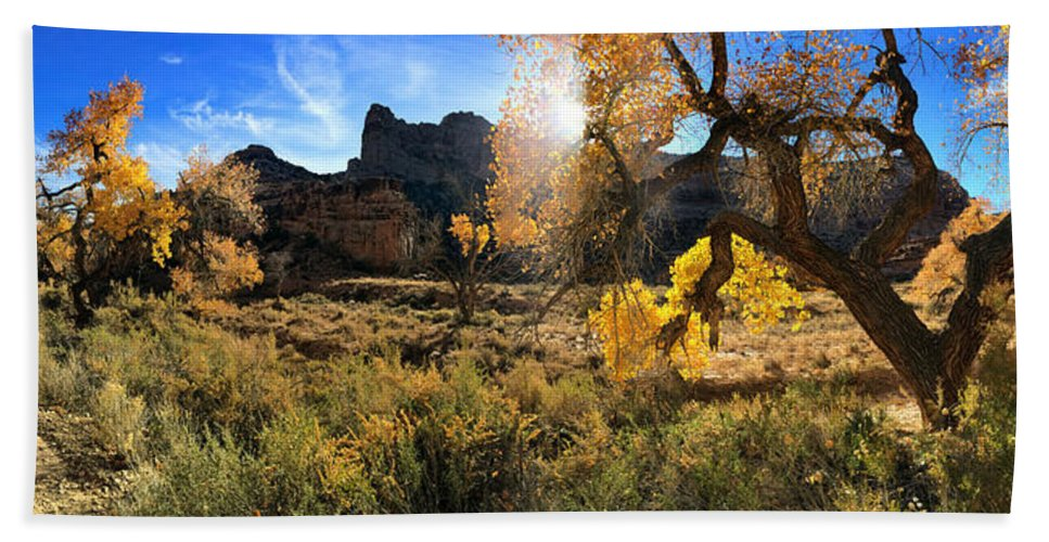 Buckhorn Wash Beach Towel featuring the photograph Cottonwoods In Buckhorn Wash 4055 by Ron Brown Photography