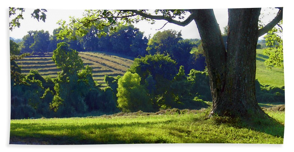 Landscape Beach Towel featuring the photograph Country Landscape by Steve Karol