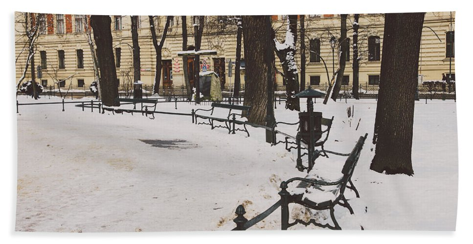 Background Beach Towel featuring the photograph Cracow Park by Pati Photography