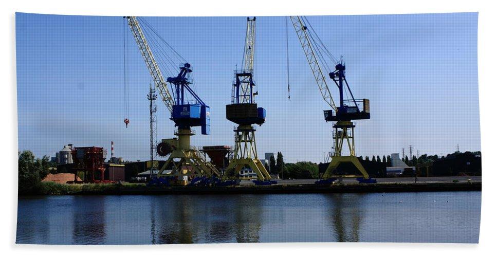 Crane Beach Towel featuring the photograph Cranes On The River Bank by Aidan Moran
