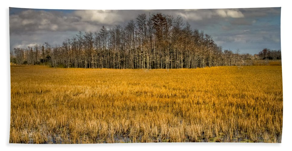Clouds Beach Towel featuring the photograph Cypress Marsh by Debra and Dave Vanderlaan