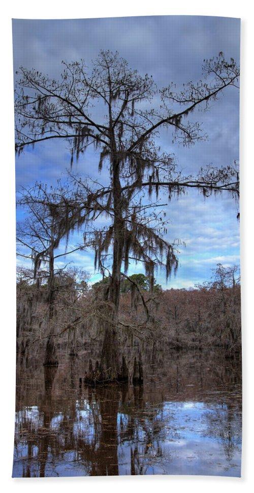 Caddo Lake Beach Towel featuring the photograph Cypress Tree by Jonathan Davison