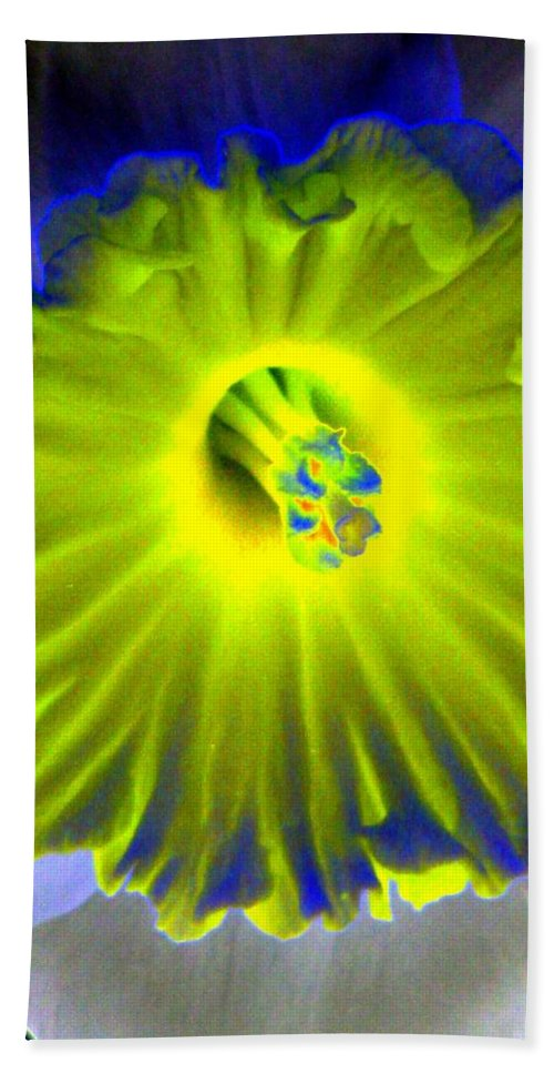 Daffodil Beach Towel featuring the photograph Daffodil Dreams - Photopower 1904 by Pamela Critchlow