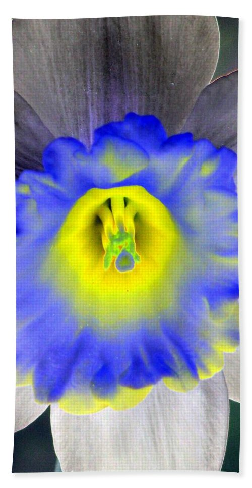 Daffodil Beach Towel featuring the photograph Daffodil Dreams - Photopower 1919 by Pamela Critchlow