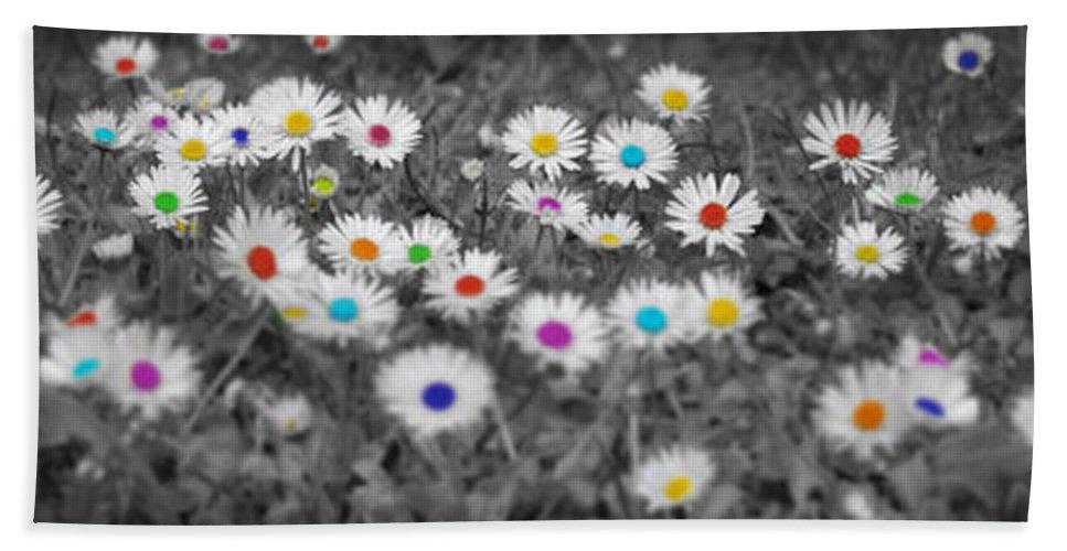 Daisy Beach Towel featuring the photograph Daisy Rainbow by Mark Rogan