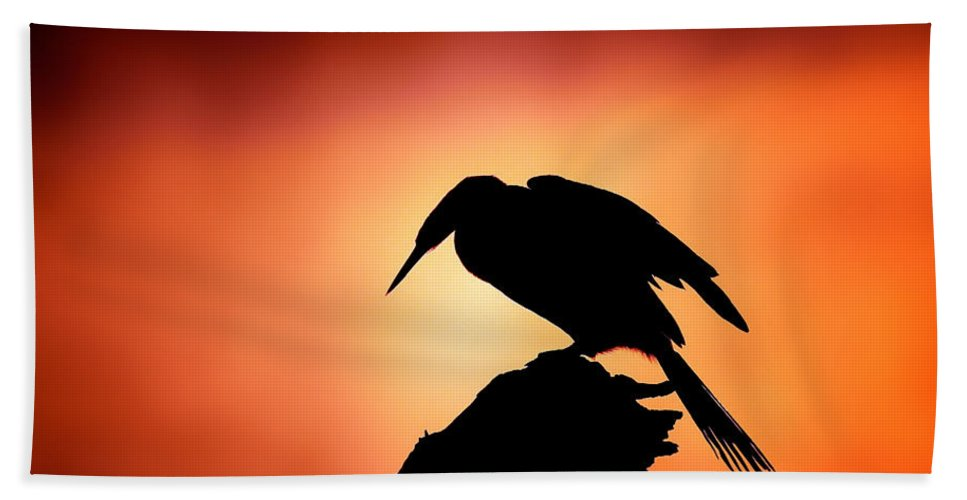 Darter Beach Towel featuring the photograph Darter Silhouette With Misty Sunrise by Johan Swanepoel