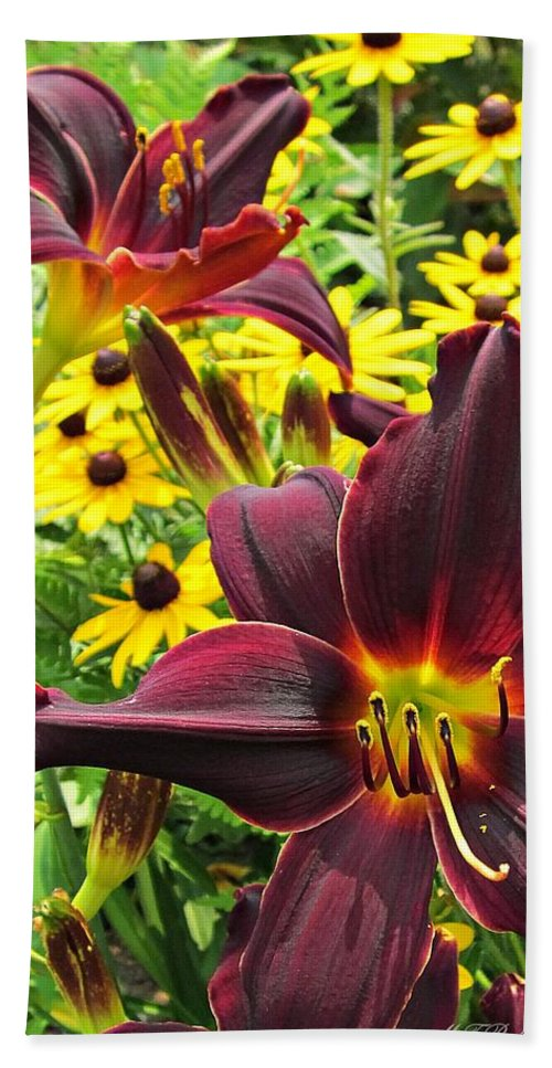 American Revolution Daylily Beach Towel featuring the photograph Daylilies And Rudbeckia by MTBobbins Photography