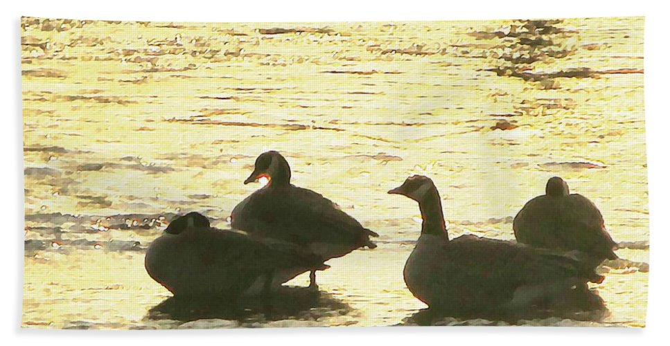 Geese Beach Towel featuring the painting Days Love by Robert Nacke