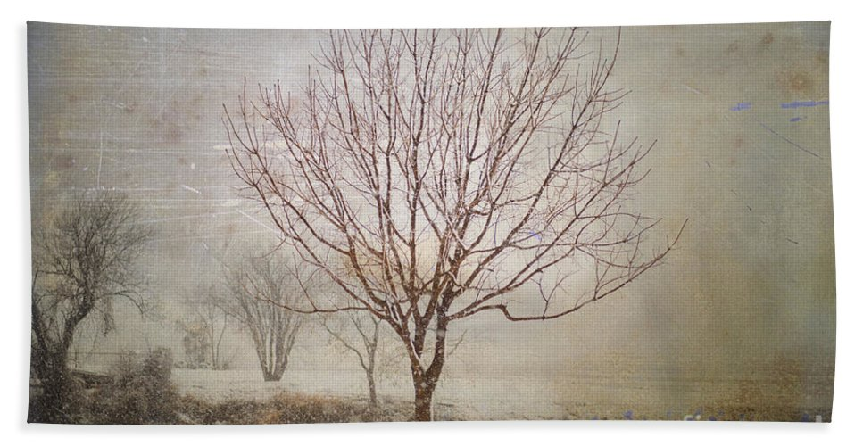 Nature Beach Towel featuring the photograph Days Of Old by Betty LaRue
